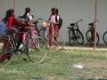 De fietsenstalling wordt druk gebruikt - The bicycle shelter in full operation