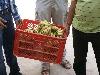 Mogelijk zijn bananen in de toekomst onderdeel van een plan voor betere voeding van de studentjes